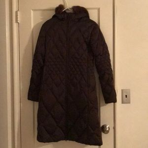 Searle Chocolate Coat